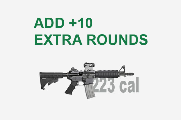 10-extra-223-rounds